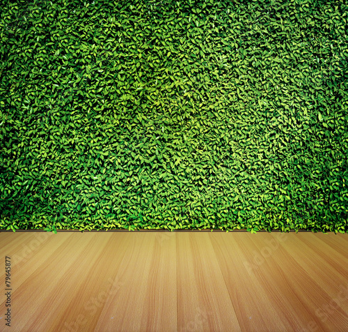 Tuinposter Textures Green leaves wall for background