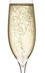 champagne in glass with bubbles fresch