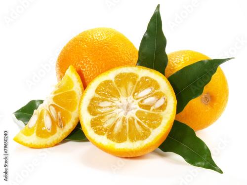Fotobehang Vruchten Bitterorangen