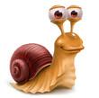 Leinwanddruck Bild - snail
