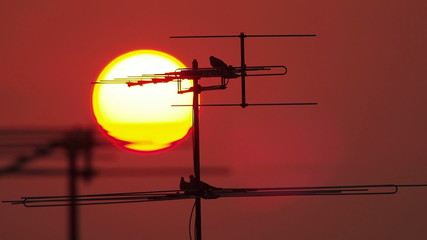 antenna with sunset