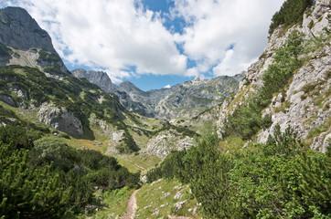 Valley Durmitor National Park, Montenegro
