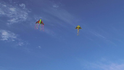 Two Colorful Kites Flying High In Blue Sky