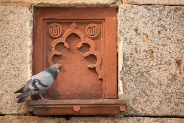 Detail of Isa Khan Niyazi tomb decoration with a sitting pigeon,