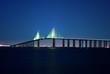 Sunshine Skyway Bridge at night - 79659881