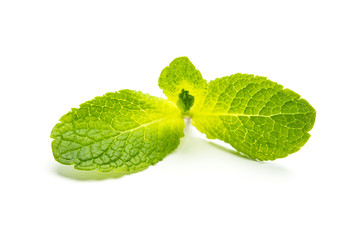 mint leaves on white