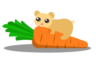 Hamster eating a carrot