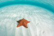 Leinwanddruck Bild - Caribbean Sea and Starfish