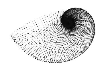 golden spiral shell grid