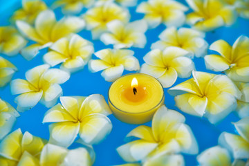 Many frangipani with yellow candle in the water