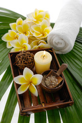 palm green leaf and spa set in bowl with towel