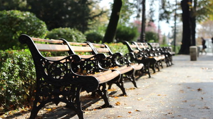 Autumn Desolated Benches