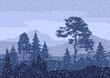 Christmas Winter Mountain Landscape - 79675693