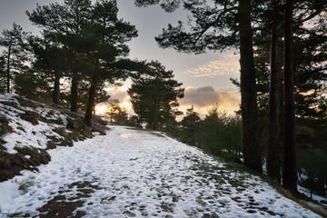 Camino de la Horizontal. Sierra de Guadarrama. Madrid