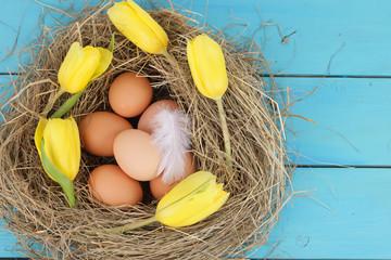 Naturnahes Osternest mit Hühnereiern