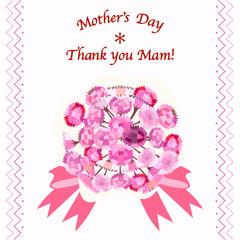 carnation 母の日
