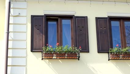 Wooden Windows Frames