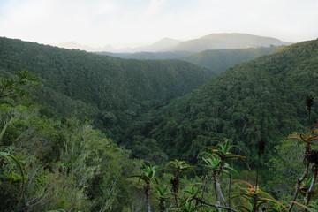 Bonduif trail