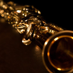 Fragment Soprano Saxophone in dark colors