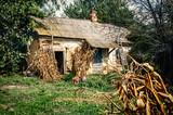 Fototapeta Old village house in forest environment