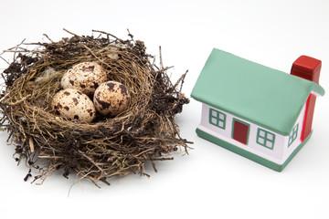 nido de ave y casa