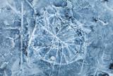 Blue toned macro background texture of broken ice - 79694692