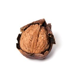 Crude walnut on white background