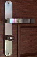 Modern chrome handle on dark brown wooden door
