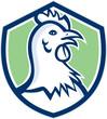 Chicken Hen Head Side Shield Cartoon