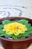 Schale mit Wasser und Blüten in einem Spa