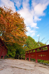 Autumn tree and red wooden bridge with stone laid pathway at the