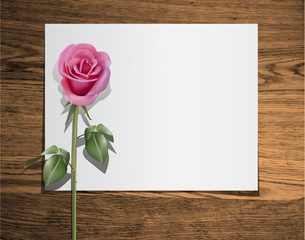 clear blank on wood texture with rose