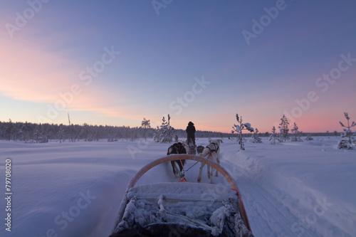 Aluminium Wintersporten Husky ride at sunset in Lapland