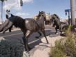 Leinwanddruck Bild - Scottsdale is in Arizona on the outskirts of Phoenix
