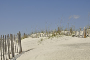 Pawley's Island Beach