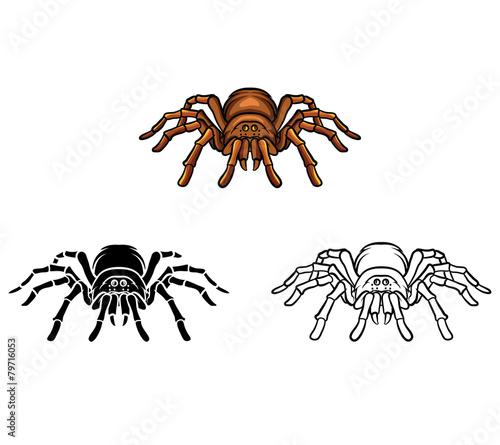 Coloring book Tarantula cartoon character - 79716053