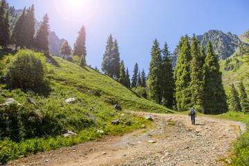summer  mountain Central Asia