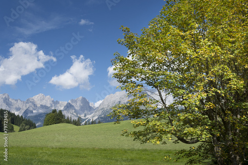 Landschaft bei Reith bei Kitzbühel, Österreich, Tirol © Oskar