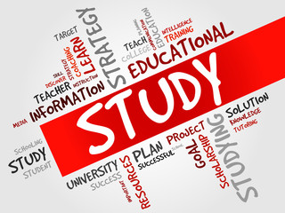 STUDY word cloud, education concept