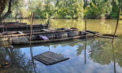 Sunken punts on the river Tisza