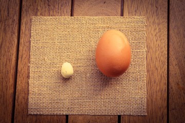 Two Eggs of different sizes
