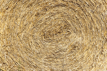 Straw background: straw made in a circular pattern