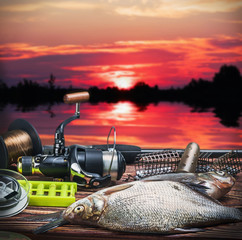 fishing tackle and caught fish