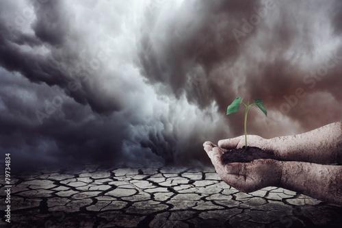 Poster Droogte Plantando na terra seca
