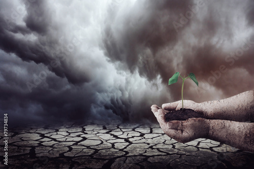 Plantando na terra seca - 79734834