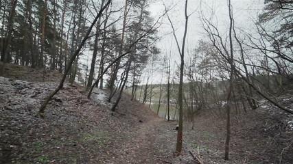 Walking down the path in a gloomy ravine. Flycam