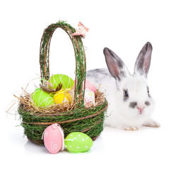Easter eggs basket and rabbit