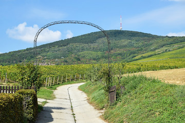 Entrance gate and road to the winery, Tokaj, Hungary