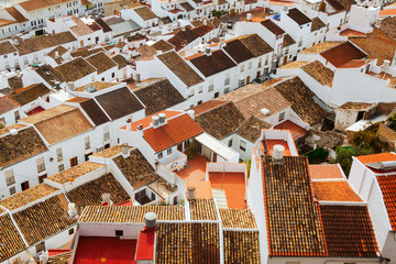 Roofs  of residential districts in andalusian town