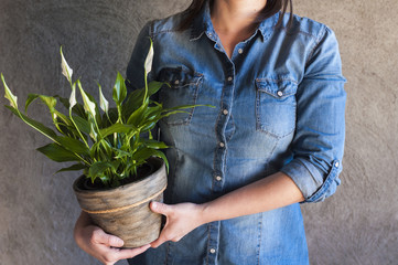 Woman holding a white calla plant in a flower pot